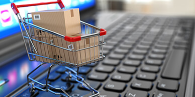 Retail Ecommerce logistics delivery partner